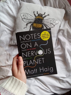 Copy of 'Notes on a Nervous Planet' held in front of a cushion with an illustration of a bee on it.